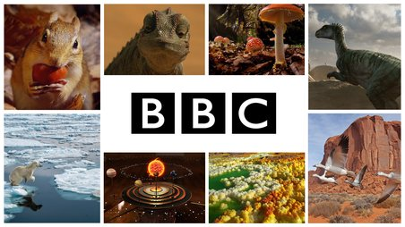Chaîne BBC